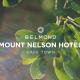 Hamman Drones Mount Nelson